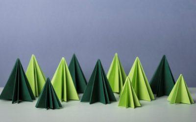 Duurzame Kerst Een circulaire kerstboom, een groen cadeau, een feestelijk thuismenu en leuke activiteiten